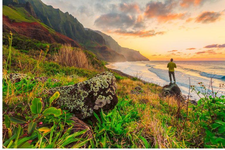 Tout ce que vous devez savoir sur HAWAII